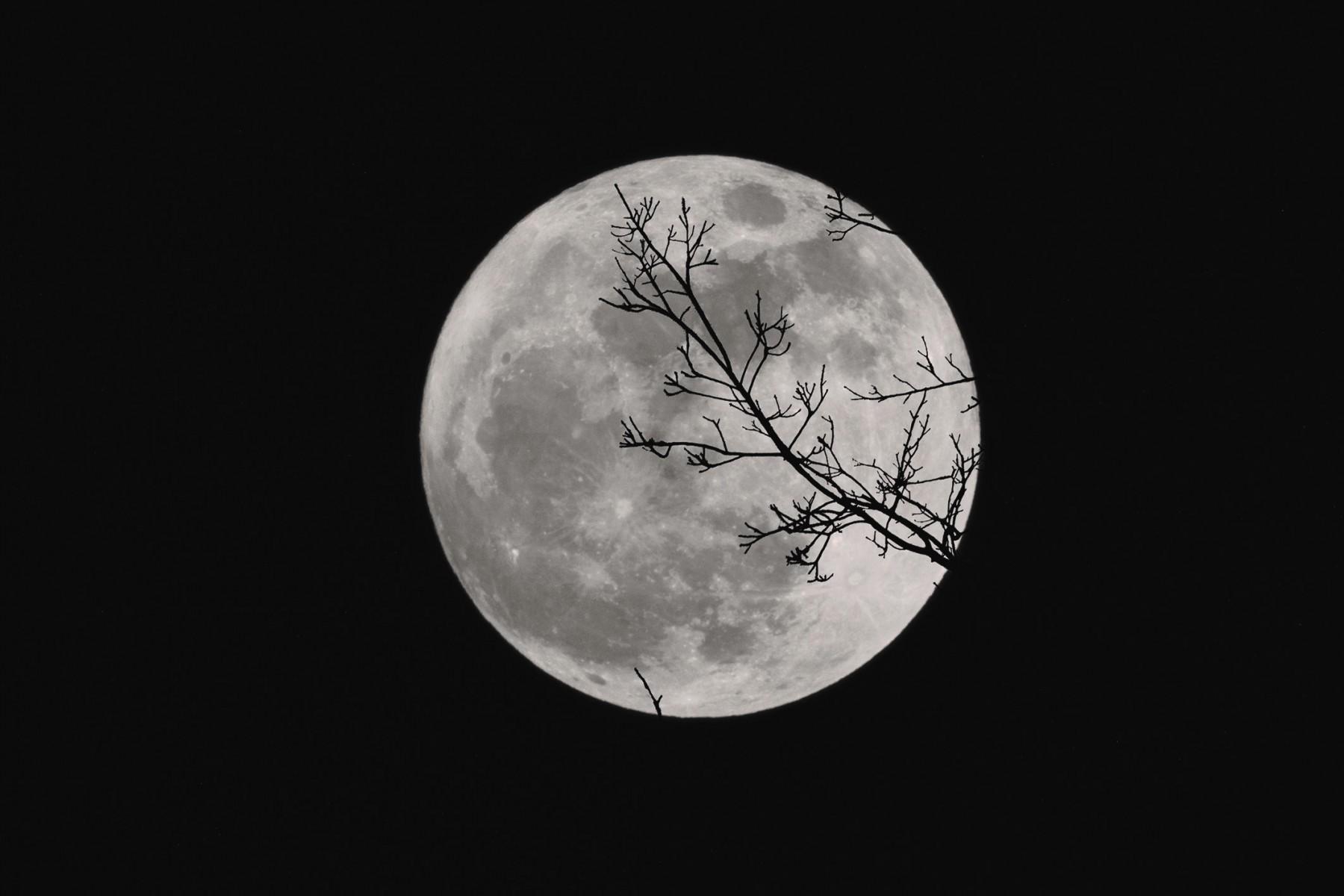 Sentieri Al Chiaro Di Luna